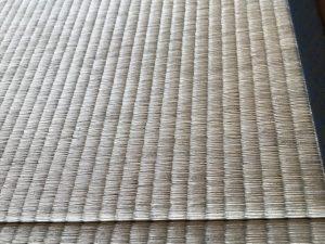 畳にカビが生えたら(2)